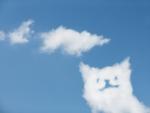 タチ・ネコの語源と由来は?